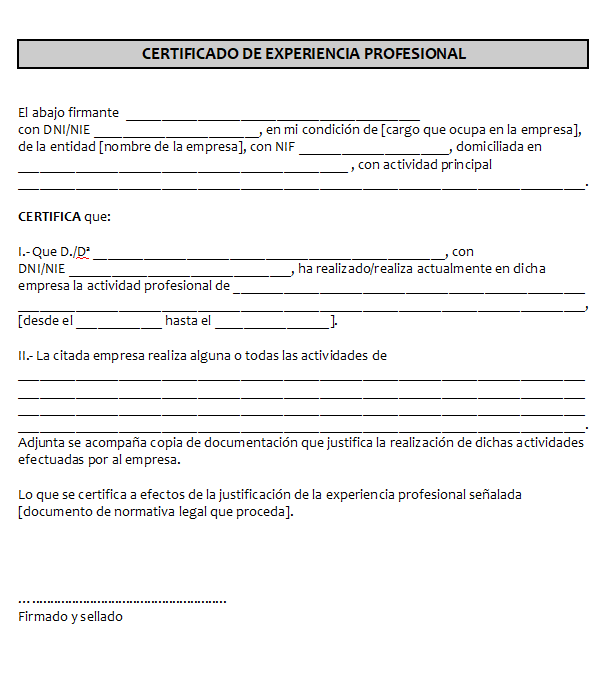 modelo certificado empresa experiencia