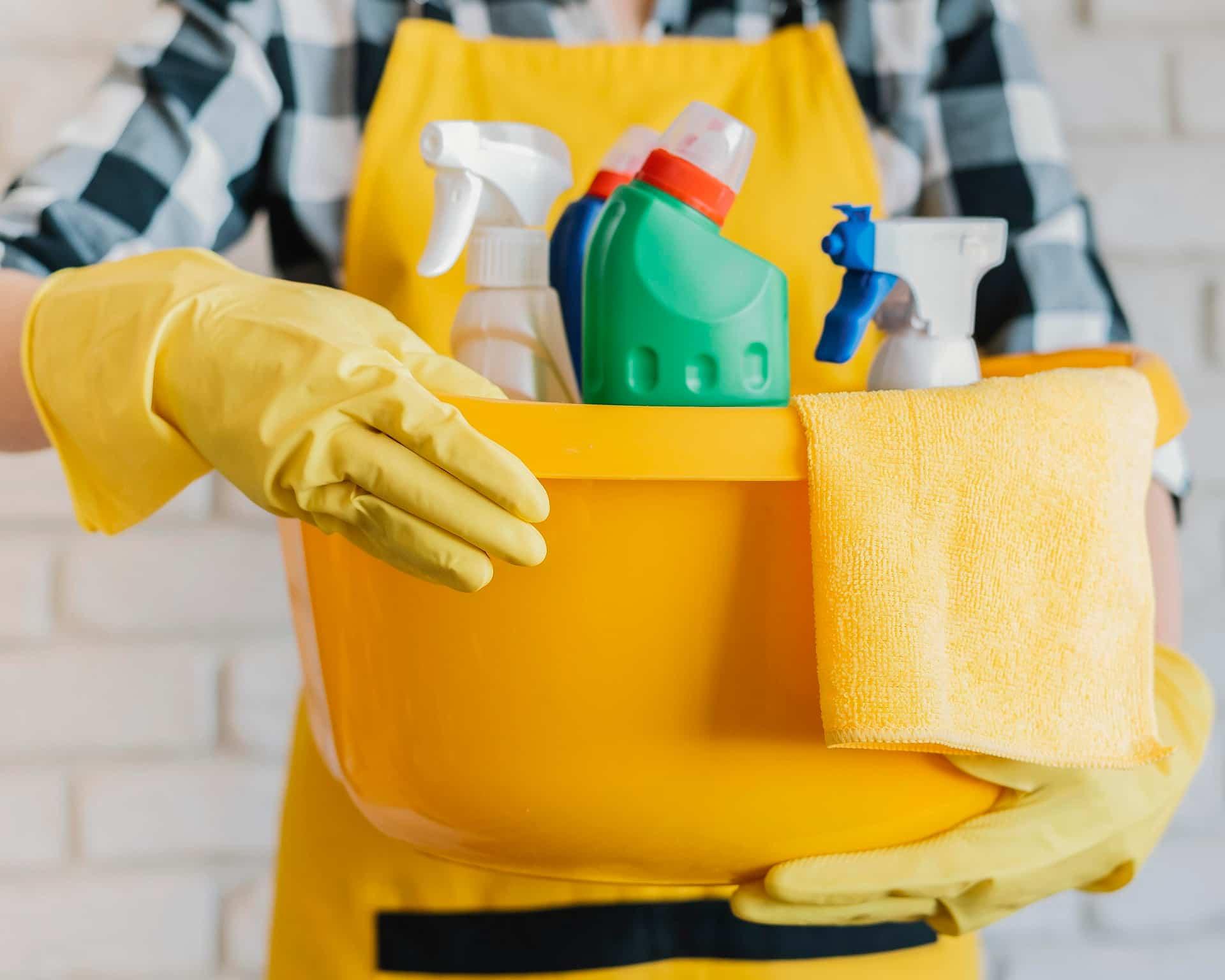 contrato empleada del hogar portada