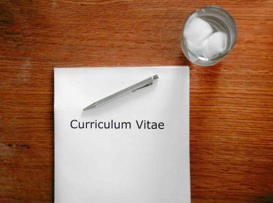 elegir curriculum segun perfil profesional